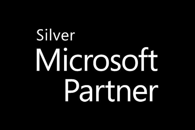 logo-silver-microsoft-partner-dark