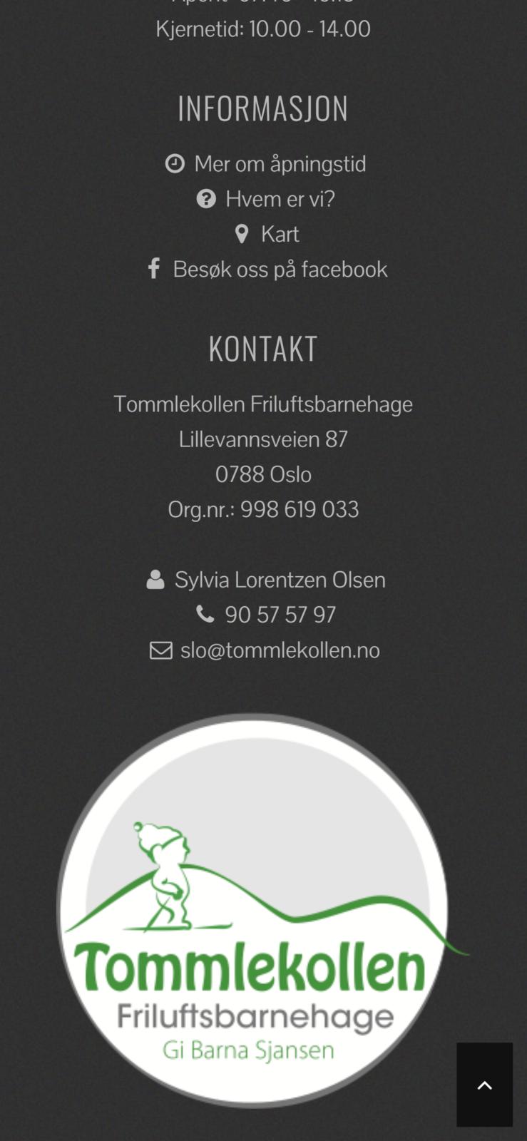 Tommlekollen webdesign av DigiFix